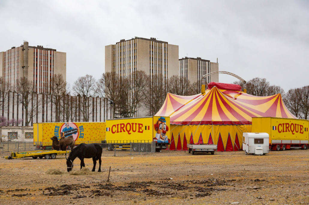 cirque_animaux_manolo_mylonas_photographie_banlieue_paris_paysage_urbain_humain_seine_saint_denis205